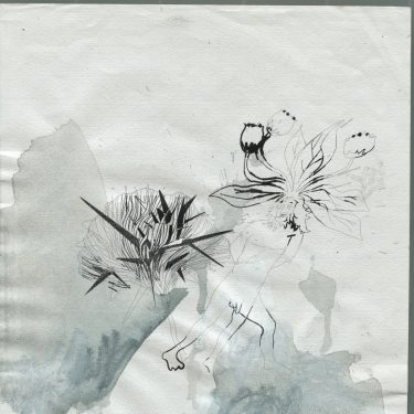 1999 Chimaere paper AndreasGehlen 375x375 - Untitled / Chimaeras III/ XI