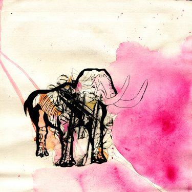 2005 Mammut paper AndreasGehlen 375x375 - Mammut / Downloadanimalseries